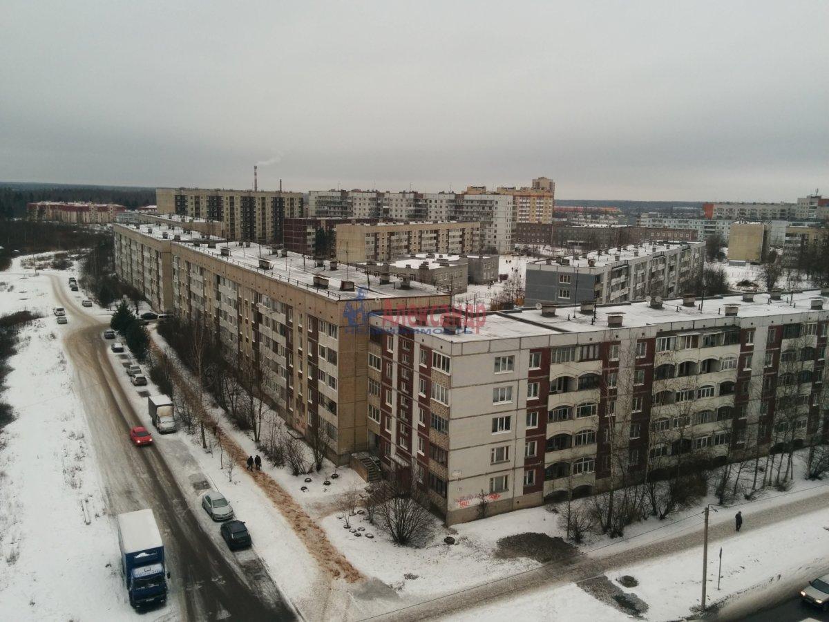 Кабан челябинская область фото представленных